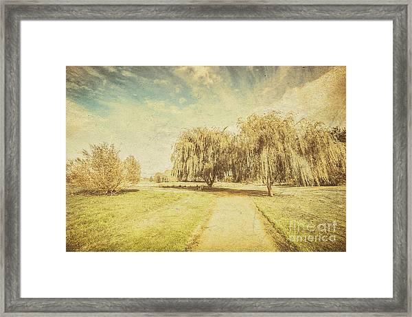 Wisteria Lane Framed Print