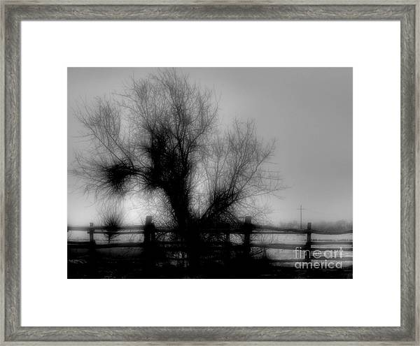 Witching Tree Framed Print