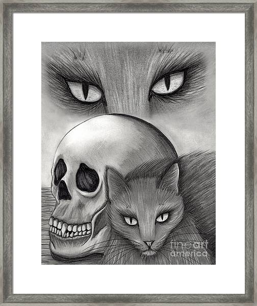 Witch's Cat Eyes Framed Print