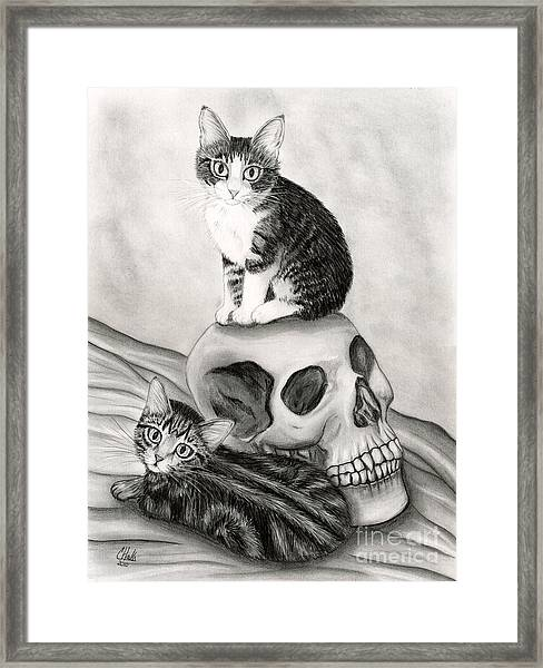 Witch's Kittens Framed Print