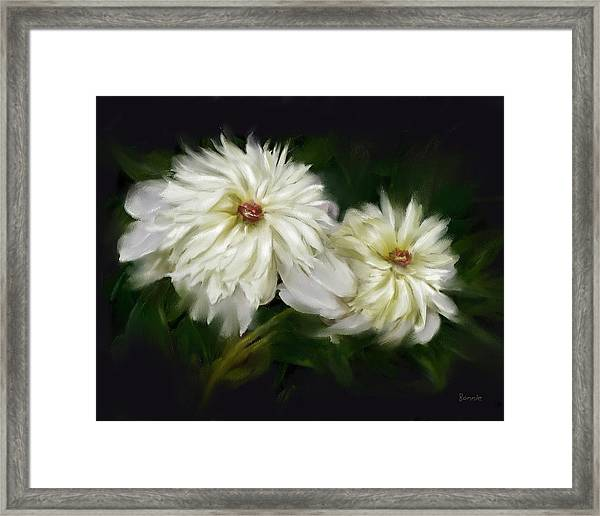 Withering Peony Framed Print