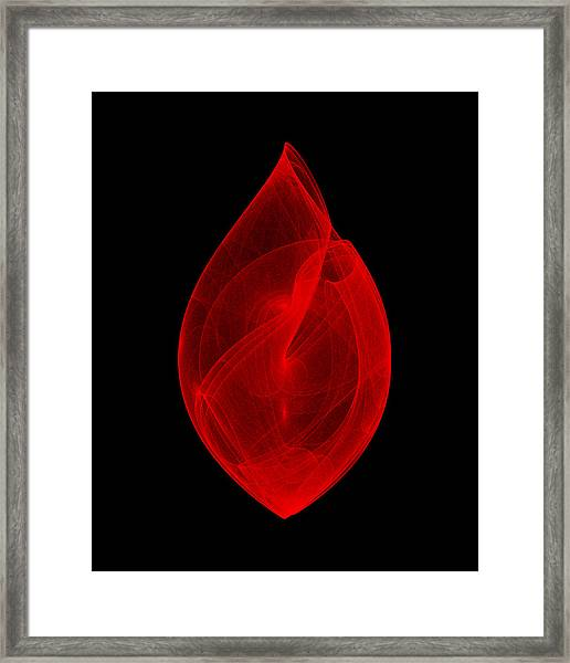 Within Shell IIi Framed Print