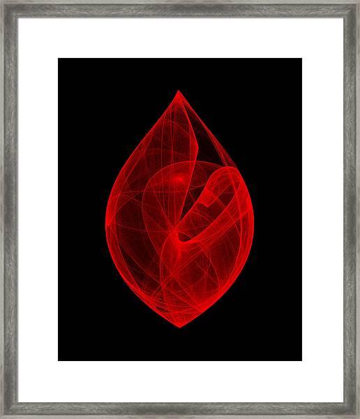 Within Shell V Framed Print