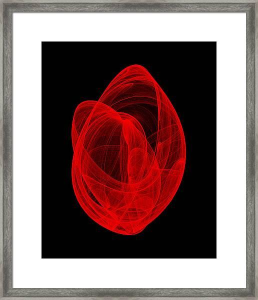 Within Shell Vi Framed Print