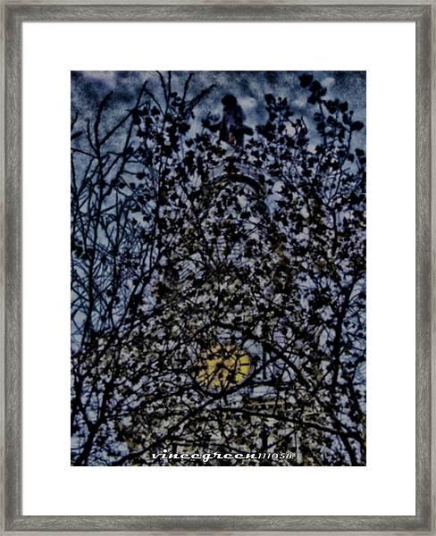 Wm Penn's Woods Framed Print