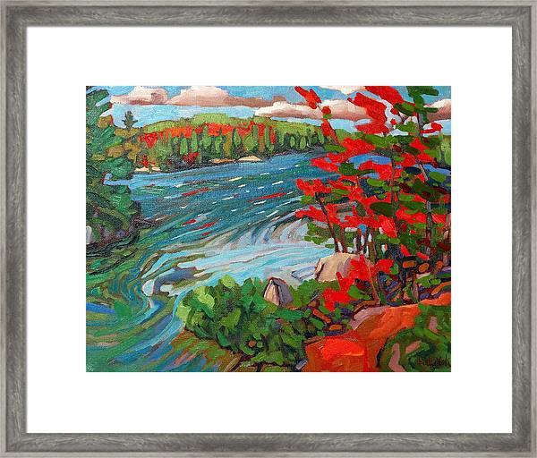Wolf Creek Framed Print