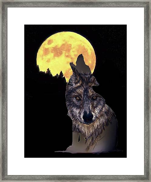 Wolf Howling At The Moon Framed Print