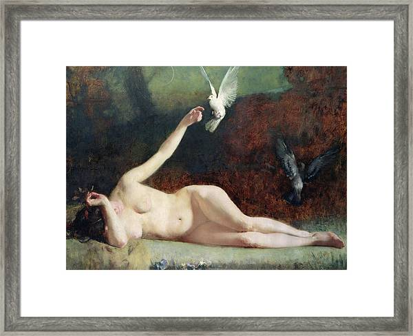 Woman With Pigeons Framed Print