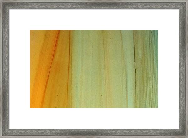 Wood Stain Framed Print