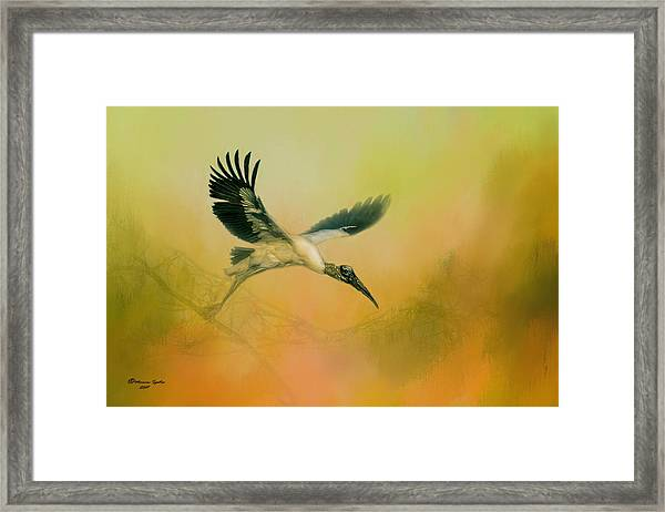 Wood Stork Encounter Framed Print