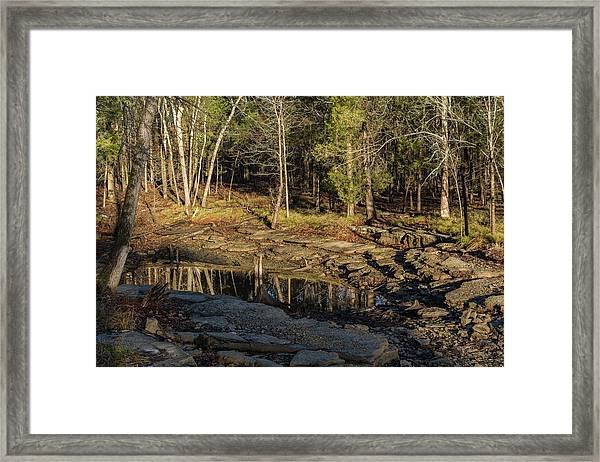 Wooded Backwash Framed Print