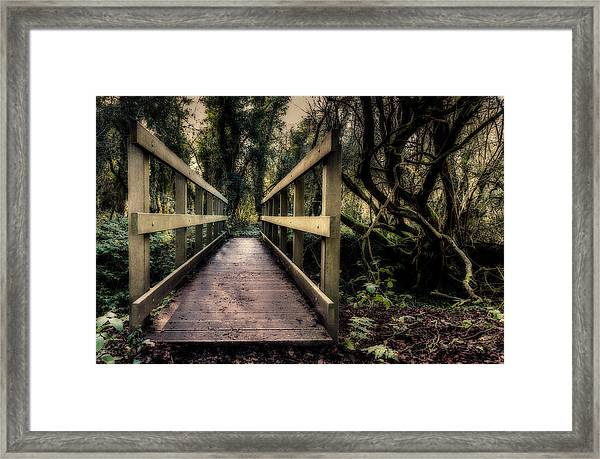 Framed Print featuring the photograph Wooden Bridge by Nick Bywater