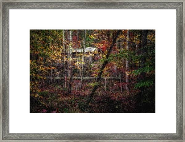 Woodland Bridge Framed Print