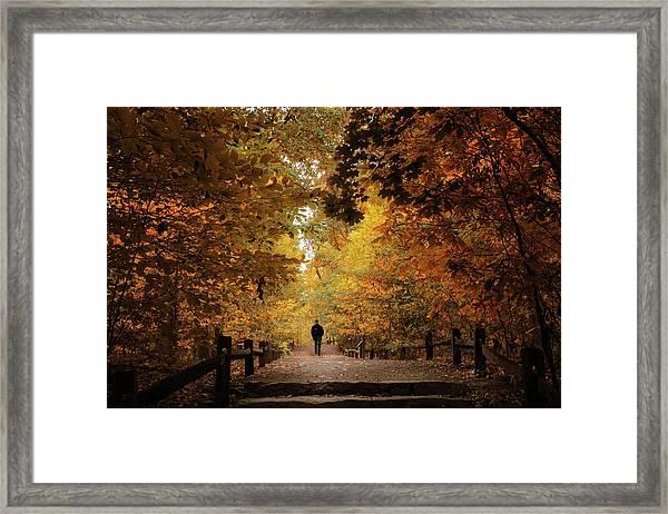 Woodland Promenade Framed Print