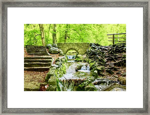 Woodland Steps And Stream Framed Print