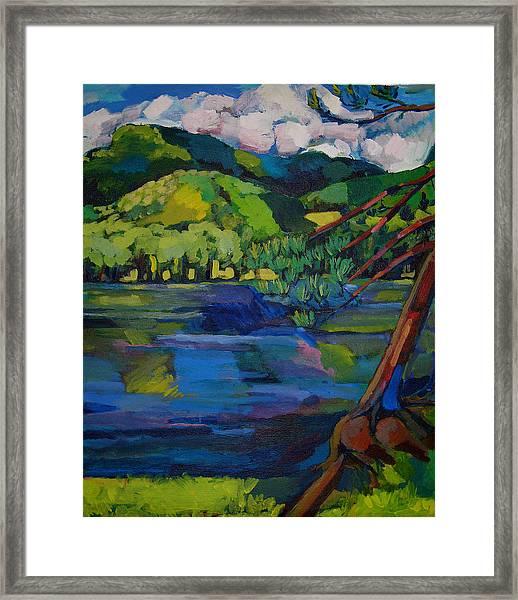Woodstock Framed Print by Doris  Lane Grey