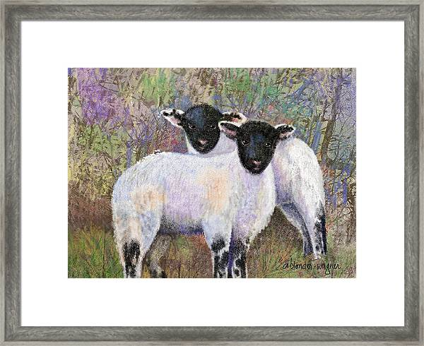 Wooly Brothers Framed Print