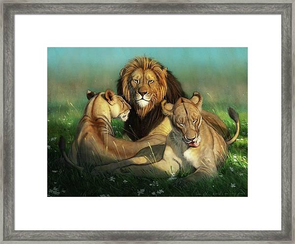 World Lion Day Framed Print