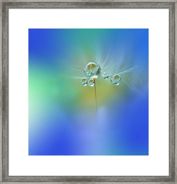 World Of Drops Framed Print