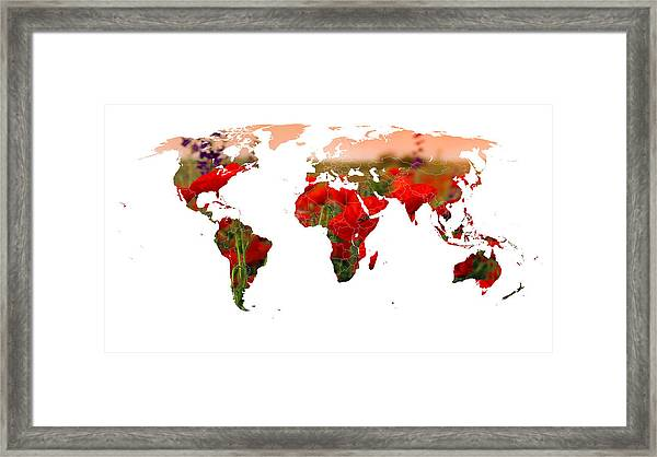 World Of Poppies Framed Print