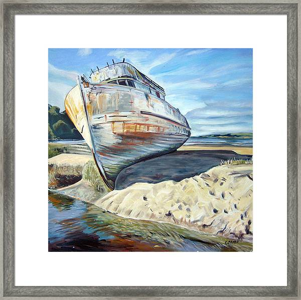 Wreck Of The Old Pt. Reyes Framed Print by Colleen Proppe
