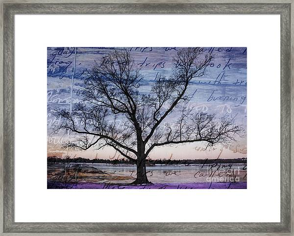 Written On The Wind Framed Print