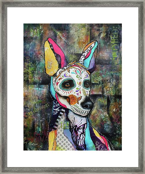 Xolo Mexican Hairless Day Of The Dead Framed Print