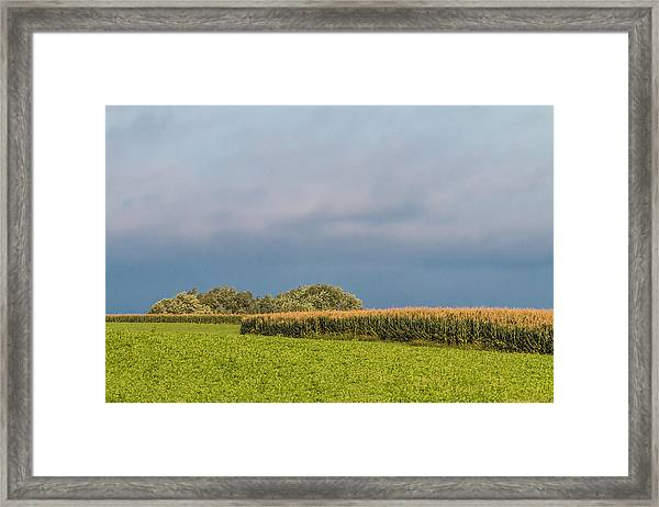 Framed Print featuring the photograph Farmer's Field by Patti Deters