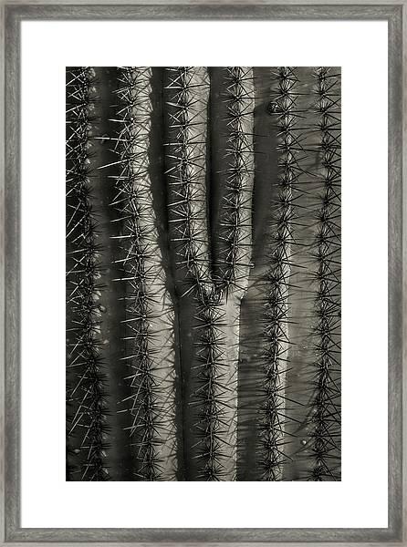 Y Framed Print by Joseph Smith