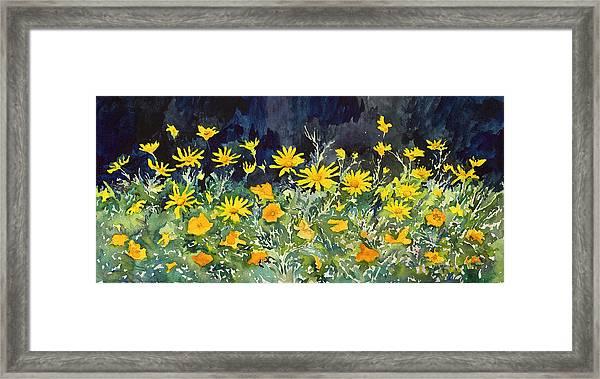 Yellow And Orange Framed Print