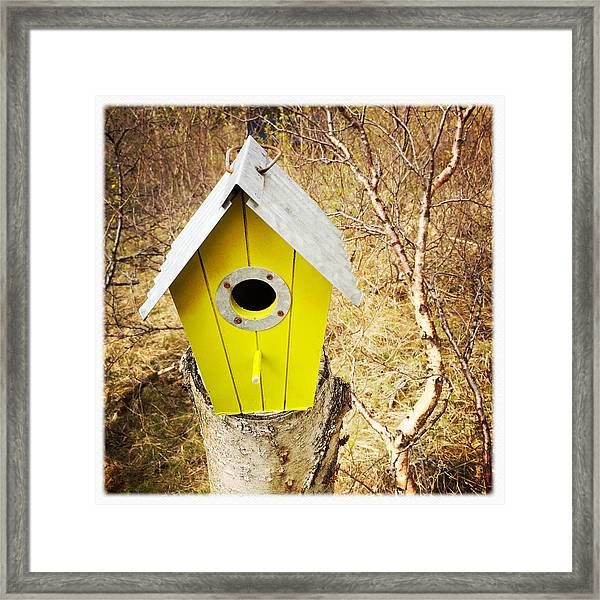 Yellow Bird House Framed Print