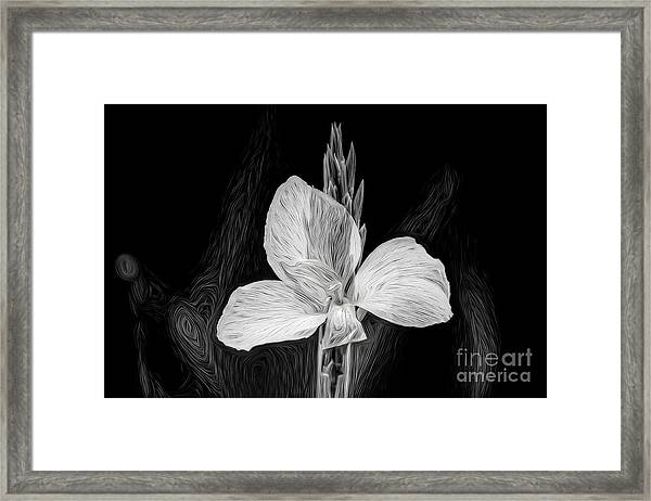 Yellow Black And White Framed Print