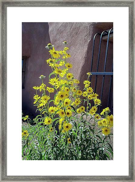 Yellow Composites At Ghost Ranch  Framed Print