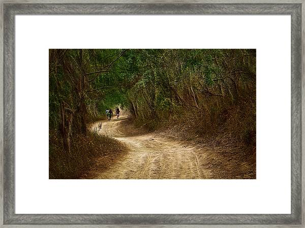 Yellow Dust Road Framed Print