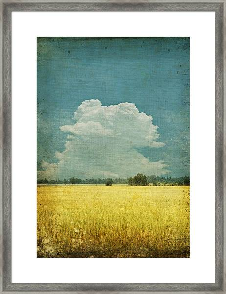 Yellow Field On Old Grunge Paper Framed Print