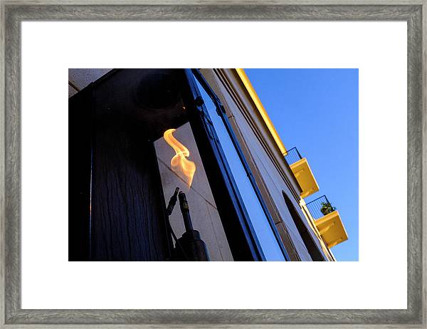 Yellow Flames And Blue Sky In Winter Park Florida Framed Print
