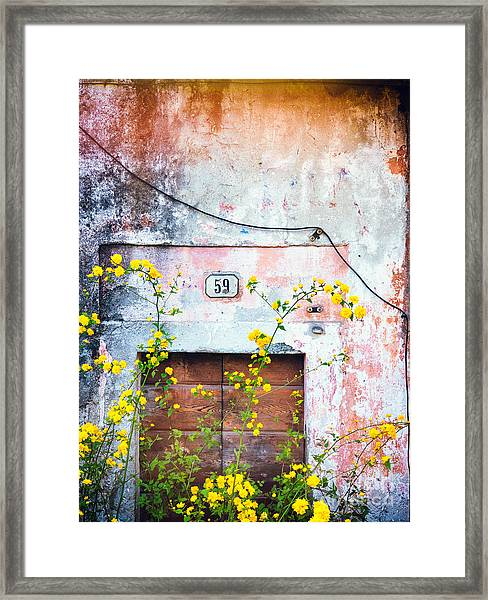 Yellow Flowers And Decayed Wall Framed Print