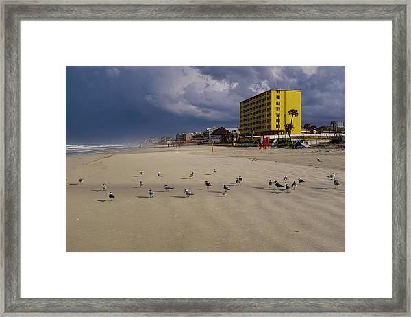 Yellow Hotel Blue Sky And Birds On Daytona Beach Florida Framed Print