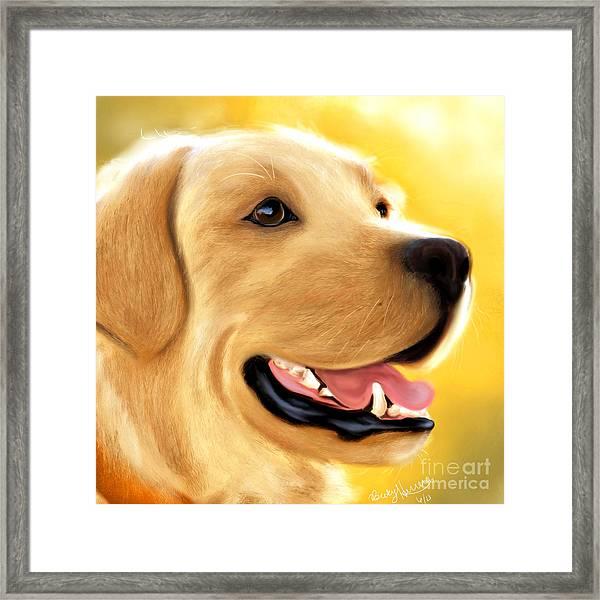 Yellow Lab Portrait Framed Print