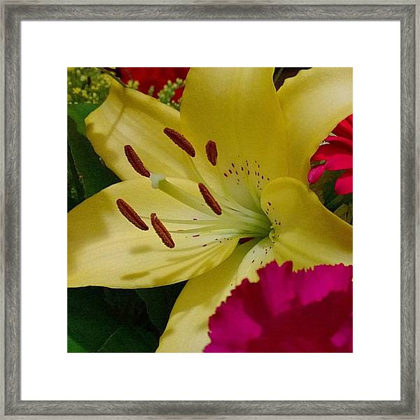 #yellow #lily Detail. Love The Pollen Framed Print
