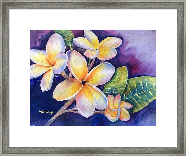 Yellow Plumeria Flowers Framed Print