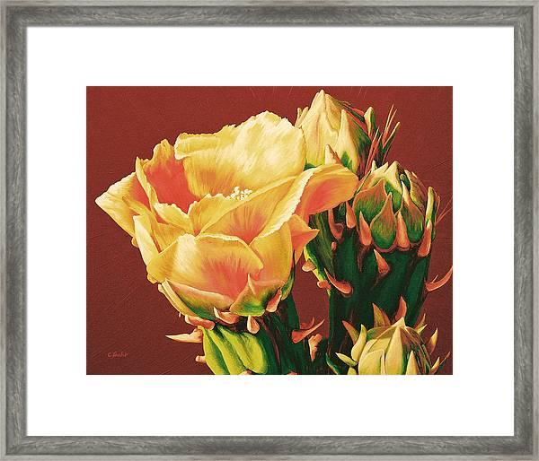 Yellow Rose Of The Desert Framed Print