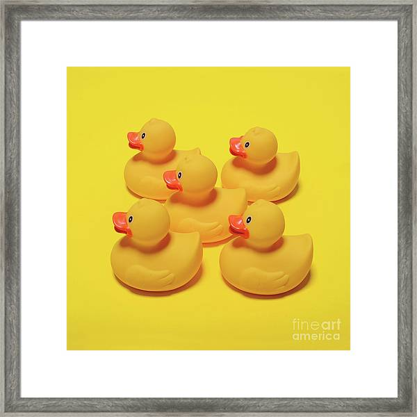 Yellow Rubber Ducks On Yellow Background - Minimal Design Framed Print