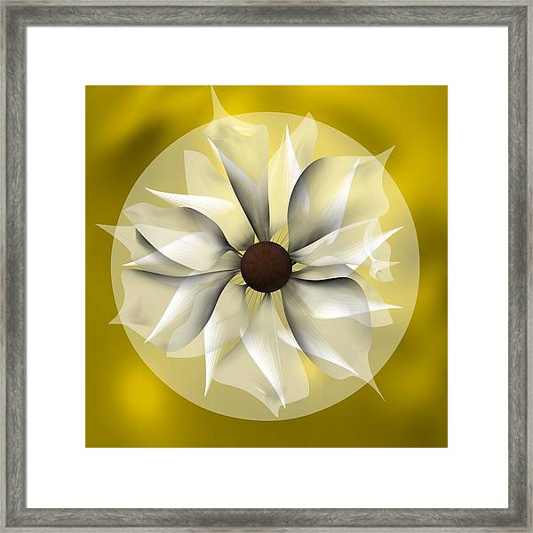 Yellow Soft Flower Framed Print