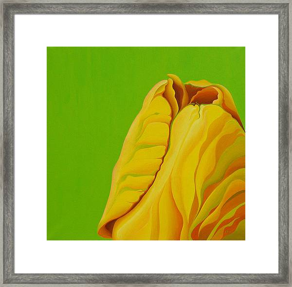 Yellow Somebuddy Framed Print
