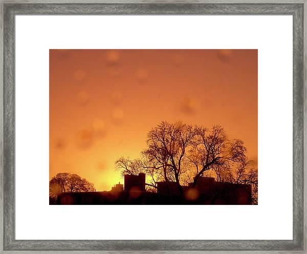 Yellow Sun Framed Print