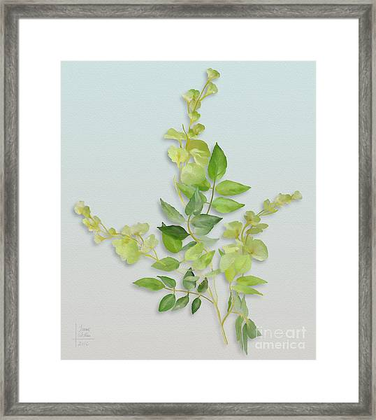 Yellow Tiny Flowers Framed Print