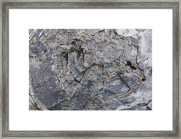 Yellowstone 3707 Framed Print