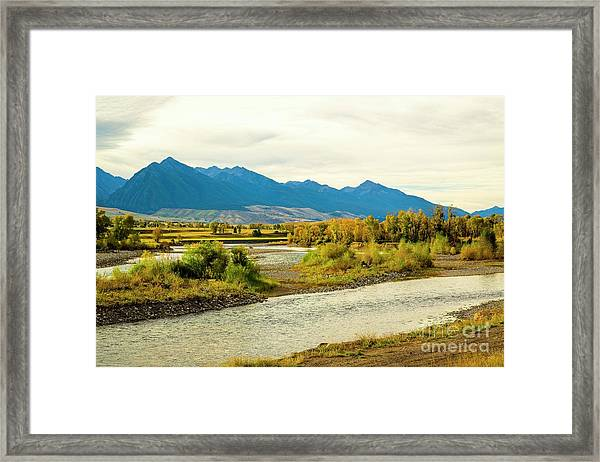 Yellowstone Morning Framed Print