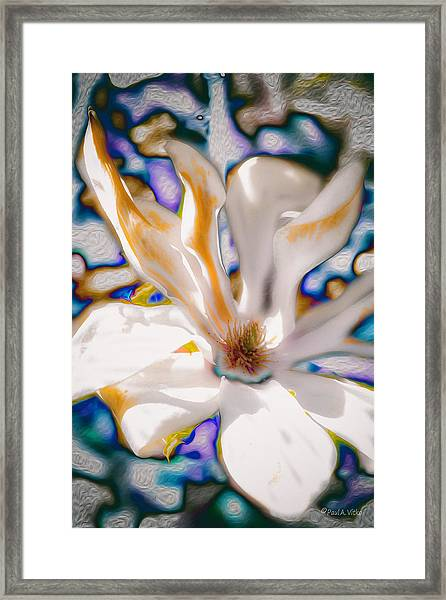 Yet Another Magnolia Framed Print
